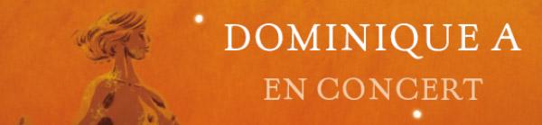 Dominique A en concert